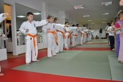 egzaminkyu20126