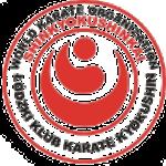 logo z kokoro przezroczyste